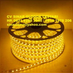 Lampu Led Strip 100m 220v