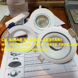 Downlight LENOMAX LED Light Fixture