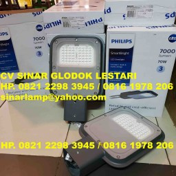 Lampu Jalan LED Philips BRP130 70 Watt CW 220-240V DM GM