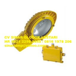 Lampu Jalan PJU Explosion Proof BLC8610 Road Lamp