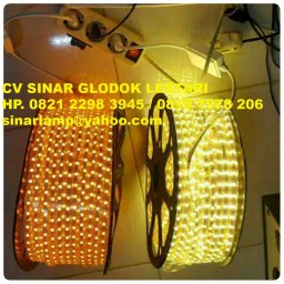 Lampu LED Strip 5050 100m Yellow dan Warmwhite