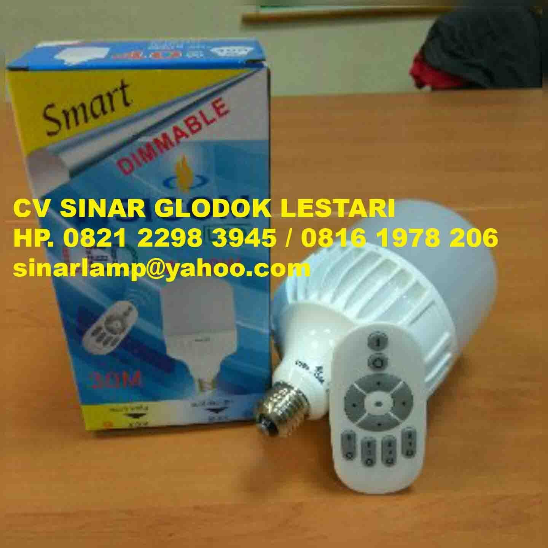 Led Bulb Dimmable 30 Watt
