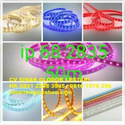 LED Strip 2835 220v 50 meter Kingtas